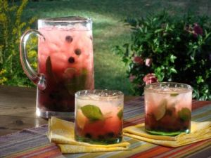GT0309_Watermelon-Plata-Tequila-Cocktail_s4x3.jpg.rend.sni12col.landscape