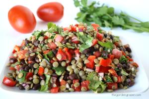 quick-vegetarian-high-protein-salads